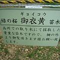 奈良春日大社 (32).JPG