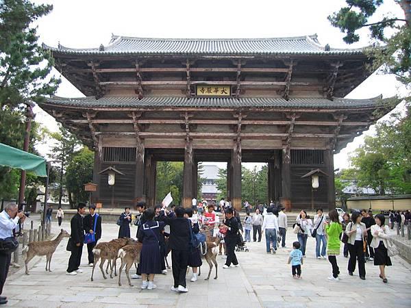 奈良東大寺 (3).JPG