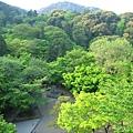 京都清水寺 (14).JPG