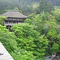 京都清水寺 (24).JPG