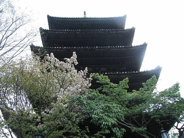 京都八坂塔 (1).JPG