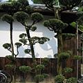 京都廬山寺 (9).JPG
