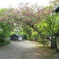 京都廬山寺 (23).JPG