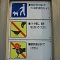 京都御苑 (2).JPG