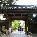 京都金閣寺 (1).JPG