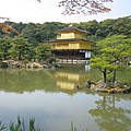 京都金閣寺 (4).JPG