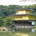 京都金閣寺 (5).JPG