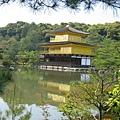 京都金閣寺 (6).JPG