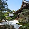 京都金閣寺 (7).JPG