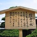京都金閣寺 (11).JPG