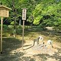京都金閣寺 (19).JPG