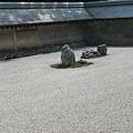 京都龍安寺 (6).JPG