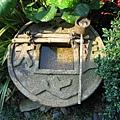 京都龍安寺 (27).JPG