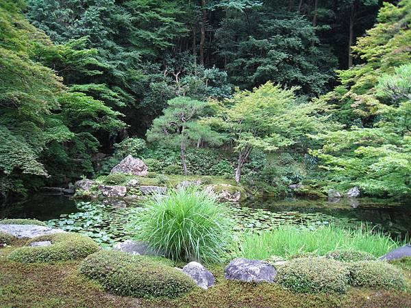 京都南禪寺 (17).JPG