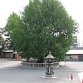 京都西本願寺 (26).JPG