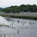 京都嵐山 渡月橋 (3).JPG