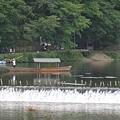 京都嵐山 渡月橋 (16).JPG