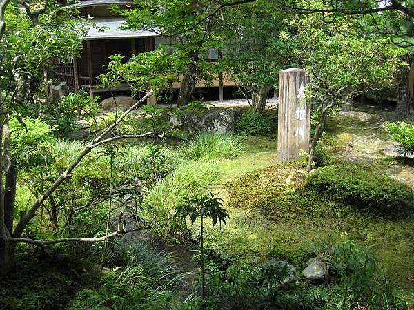 京都嵐山 天龍寺 (17).JPG
