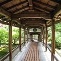 京都嵐山 天龍寺 (23).JPG