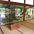 京都嵐山 天龍寺 (38).JPG