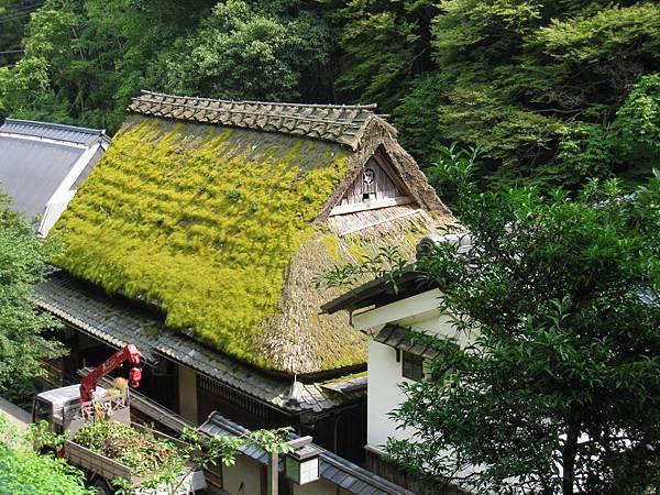 京都嵐山 鳥居本.JPG