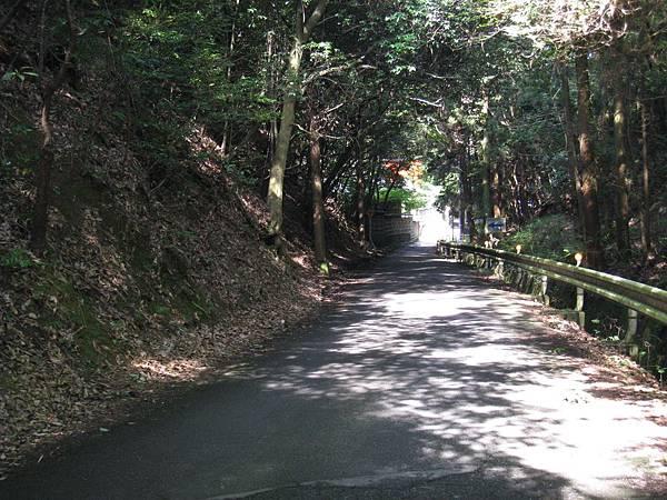 京都嵐山 鳥居本 (10).JPG