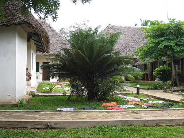 Diani Campsite n Cottages (36).jpg