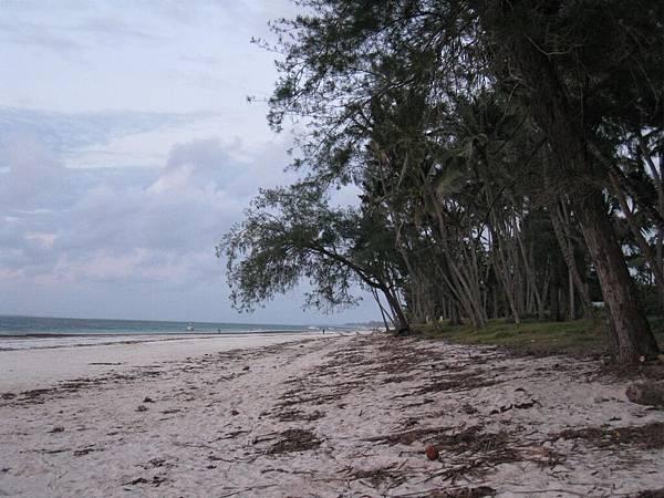 Diani Beach (6).jpg