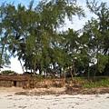 Diani Beach (19).jpg