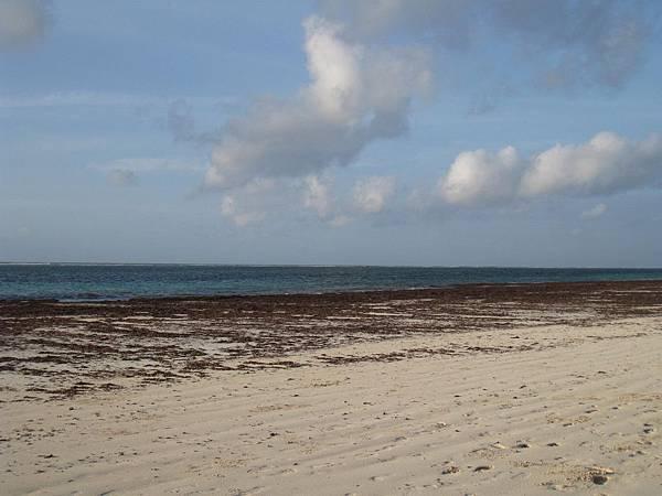 Diani Beach (31).jpg