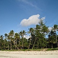 Diani Beach (32).jpg