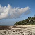 Diani Beach (33).jpg
