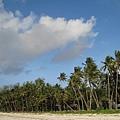 Diani Beach (35).jpg