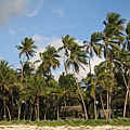 Diani Beach (37).jpg