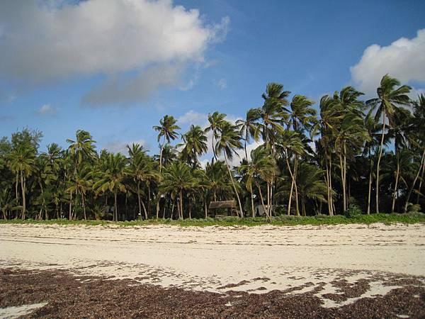 Diani Beach (38).jpg