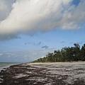 Diani Beach (40).jpg