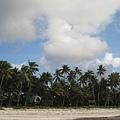Diani Beach (41).jpg