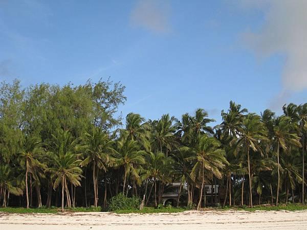 Diani Beach (42).jpg