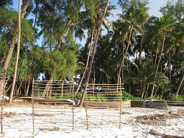 Diani Beach (43).jpg