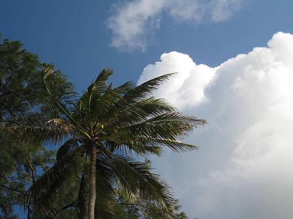 Diani Beach (44).jpg