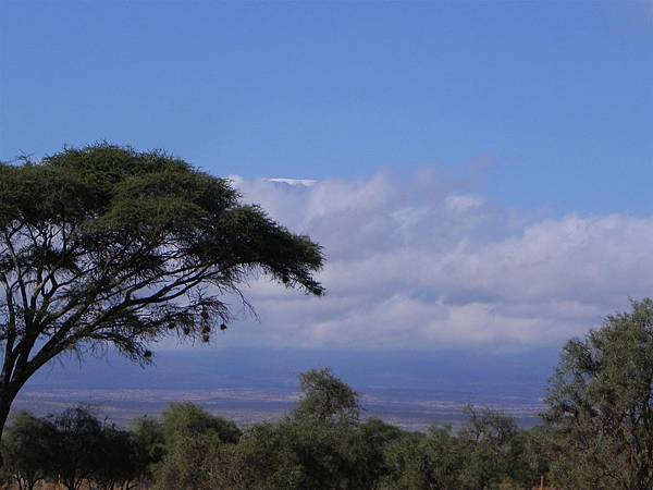 Mt Kilimanjaro (9).JPG
