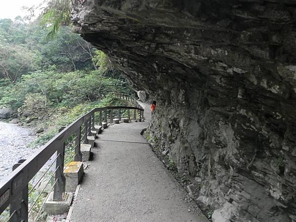 砂卡礑步道 (25).JPG