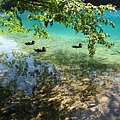 Plitvice Lakes NP 下湖區 (9).JPG