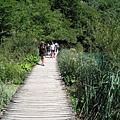 Plitvice Lakes NP 下湖區 (11).JPG