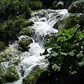 Plitvice Lakes NP 下湖區 (36).JPG