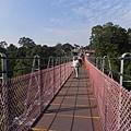 天空之橋 2012 (3)