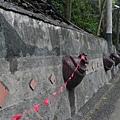 涼山瀑布 (3)