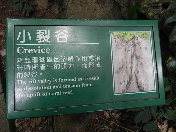 社頂自然公園 (3)