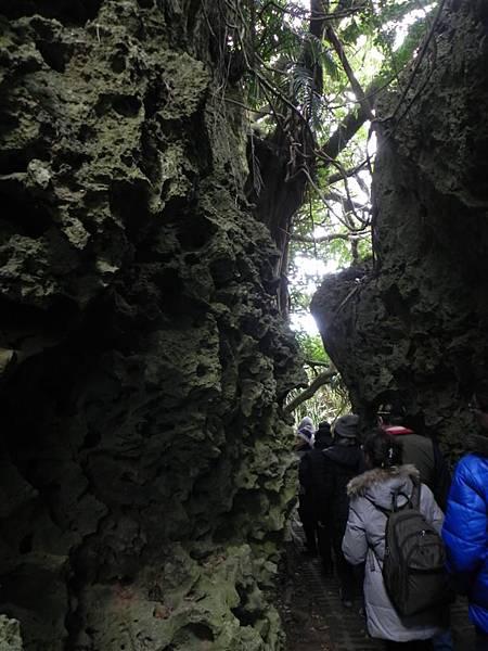 社頂自然公園 (4)