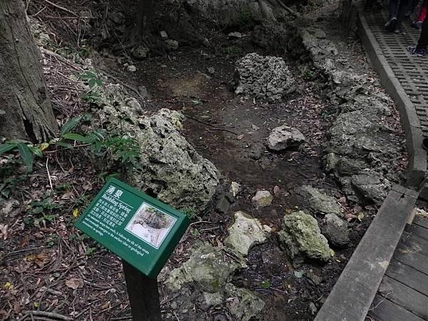 社頂自然公園 (7)